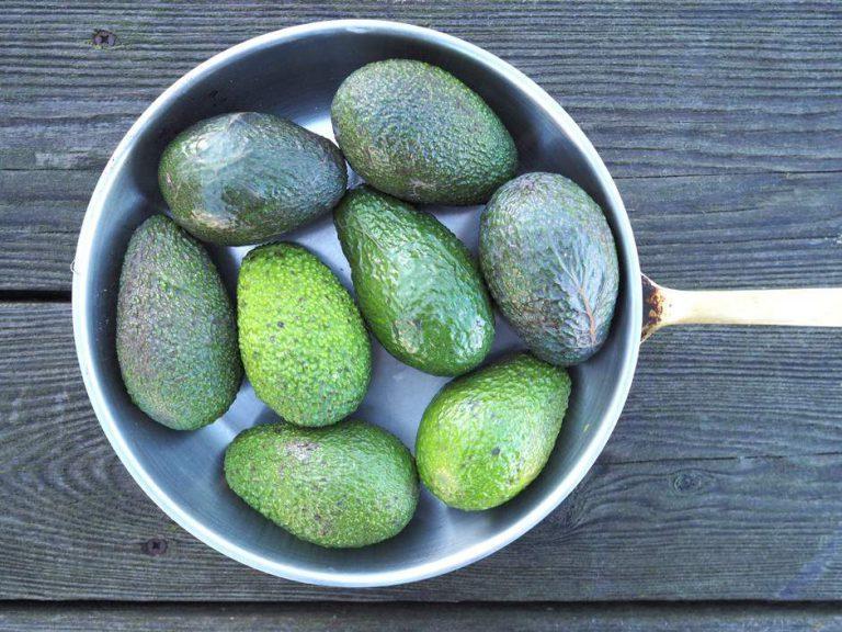 Кардиологи назвали один из самых полезных фруктов для сердца