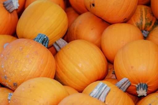 Назван один из самых полезных овощей для сердечно-сосудистой системы