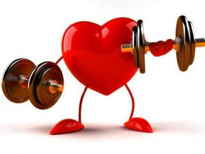 Названы шесть главных условий нормальной работы сердца