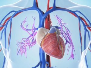 Лечение нарушений сердечного ритма заряженными частицами вместо катетера