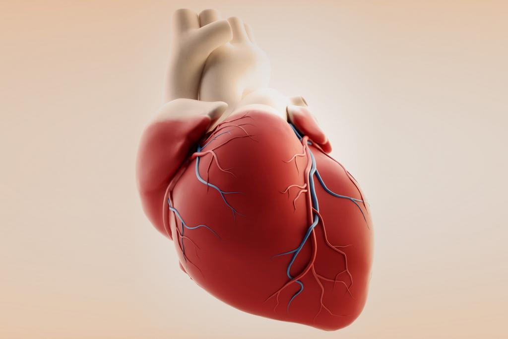 Ревматические болезни сердца