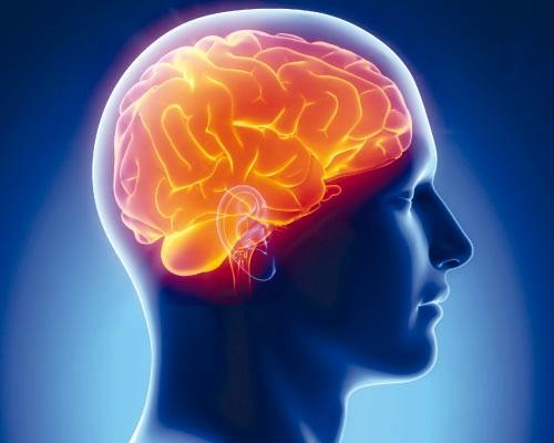 Названы самые полезные продукты для мозга