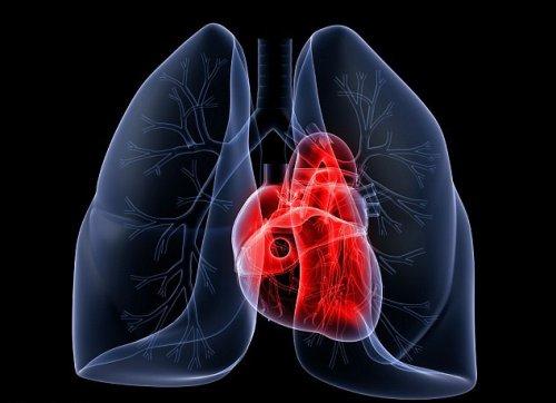 Анализ крови обеспечит раннюю защиту от инфаркта