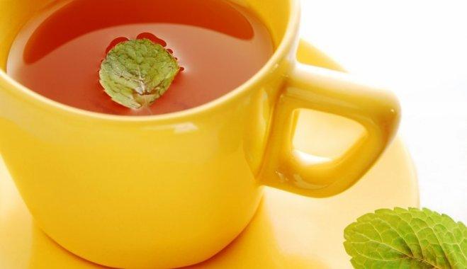 Любите зеленый чай? Вам сюда