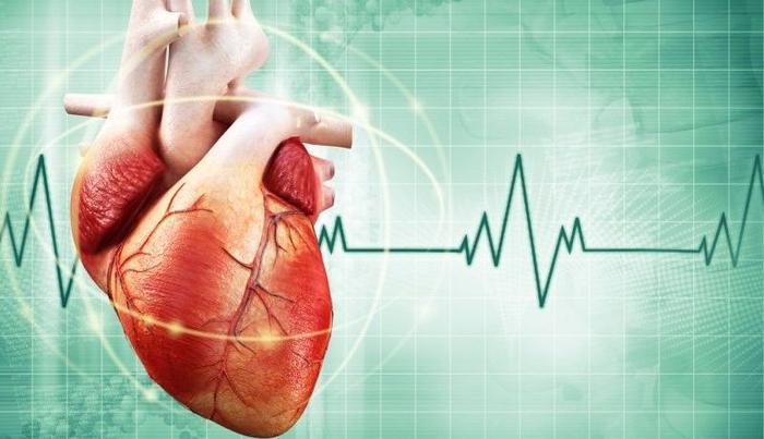 Причины сильного сердцебиения и лечение тахикардии