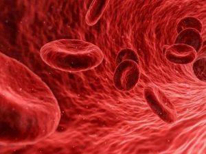 Риск тромбов в крови будут оценивать по-новому