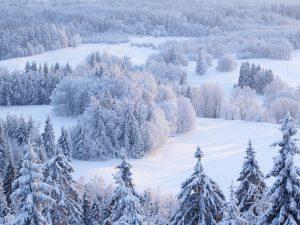 Холодная зима повышает риск инфаркта миокарда