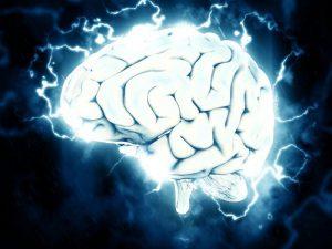 Популярная протеиновая добавка может повредить клетки головного мозга
