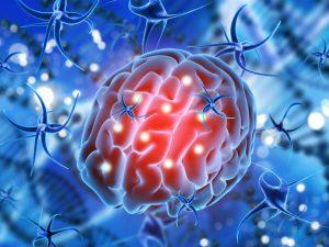 Сосудистые заболевания негативно влияют на структуру мозга