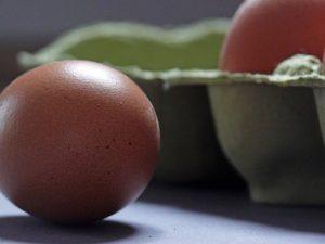 Употребление яйца в день коррелирует со снижением риска диабета 2 типа