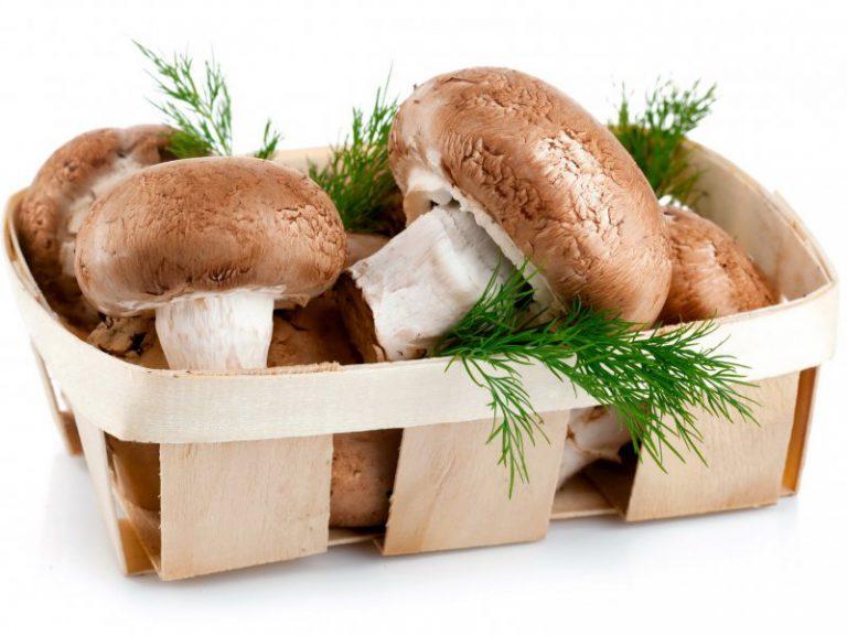 Какие грибы полезно есть при диабете?