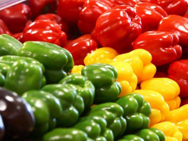 Болгарский перец полезен при отсутствии болезней желудка, почек и сердца