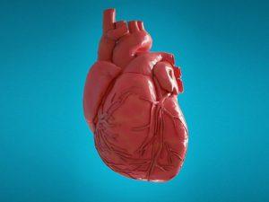 Состояние сердца в среднем возрасте влияет на вероятность будущей деменции