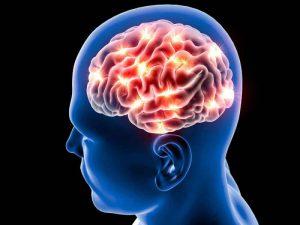 Спонтанные решения и бездействия мозга взаимосвязанны