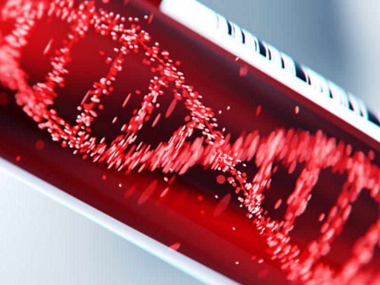 Обнаружены гены, отвечающие за внезапную остановку сердца