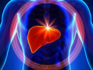 Как гепатит С влияет на сердце – главные риски