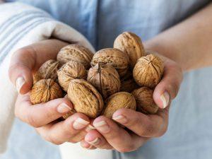 Употребление двух-трех грецких орехов в день оздоровляет кишечник и сердце