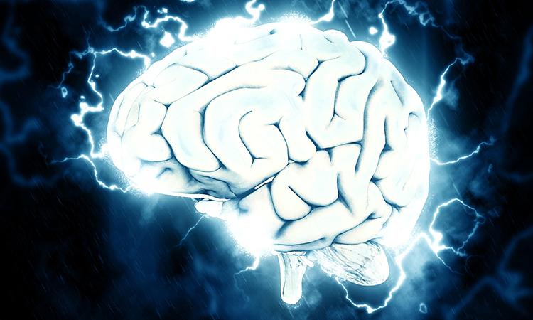 Названа диета, способная замедлить старение мозга