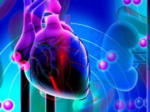 2 натуральных средства для предотвращения гипертонии