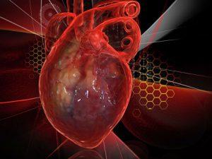 Найден способ восстановить сердце после инфаркта