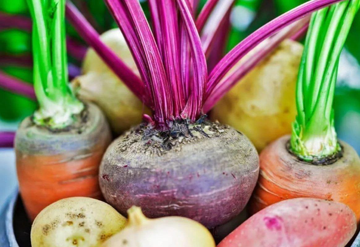 Кардиолог Мурадян назвала самые полезные простые продукты для сердца
