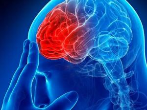7 натуральных настоев для профилактики инсульта