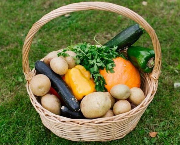 Назван летний овощ, полезный для печени и сердца