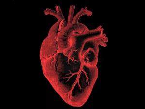Назван тип пищи, снижающий риск смерти от воспаления и болезней сердца