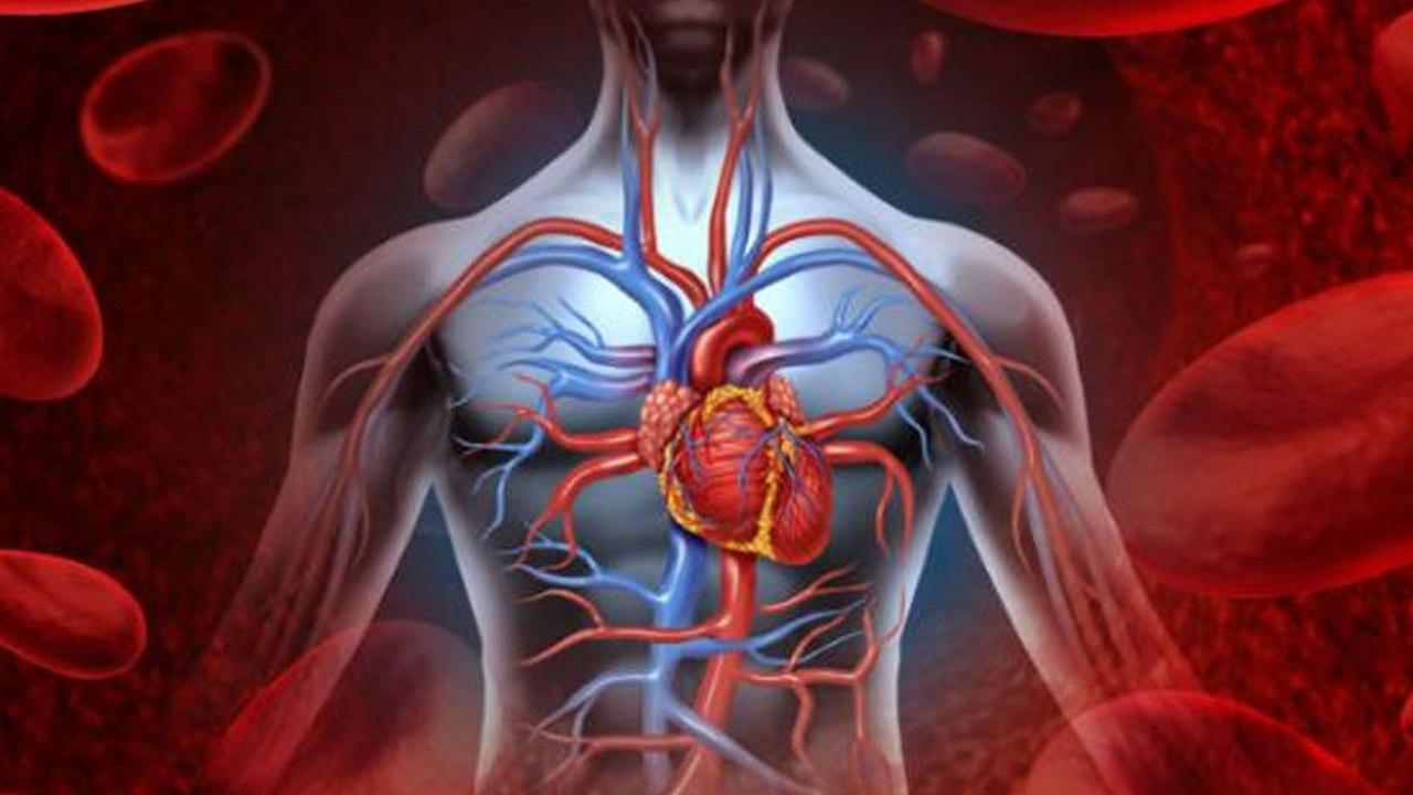 Народные средства на основе злаков для здоровья сердца