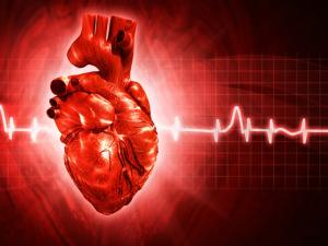 Сало, бананы и сливочное масло: почему их любят кардиологи?