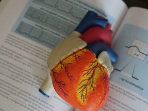 Ученые нашли потенциальный способ предотвращения сердечных приступов и инсультов
