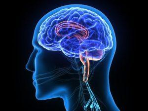 Болезнь Паркинсона: симптомы, профилактика, лечение