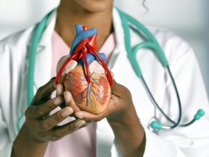 Как эффективно позаботиться о сердечно-сосудистой системе