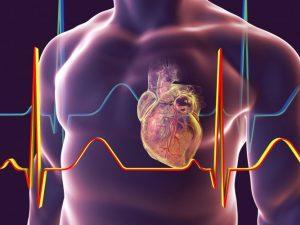 Привычки, которые сохранят сердце здоровым и сильным до глубокой старости