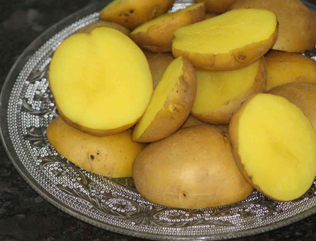 Употребление картофеля может быть полезным для снижения давления