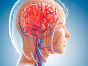 Простые техники для улучшения мозгового кровообращения