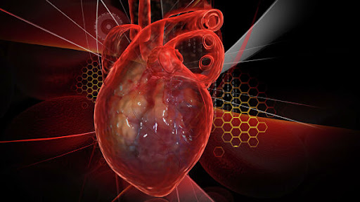 Симптомы инфаркта у женщин, которые сложно распознать
